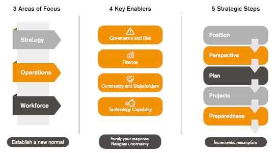 areas of focus enablers strategic steps
